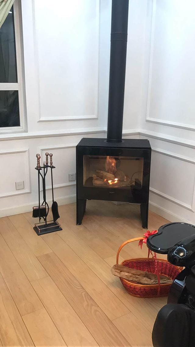 燃木壁炉独立式